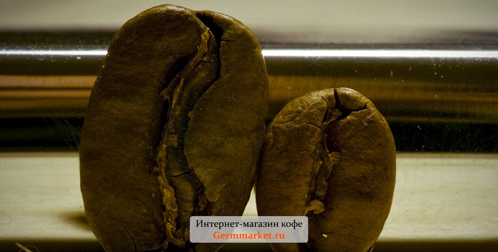 Зерна Марагоджип Арабика