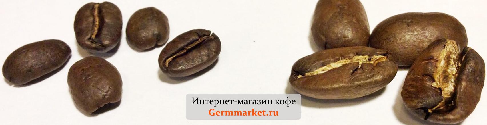 В чем разница между кофе Марагоджип и Арабика?